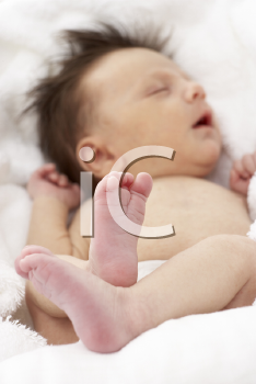 Royalty Free Photo of a Sleeping Baby