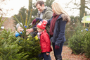 Outdoor Family Choosing Christmas Tree Together