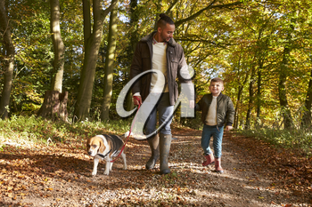 Father And Son Walking Dog In Autumn Woodland Together