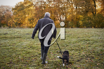 Senior Man Taking Dog For Walk In Autumn Landscape