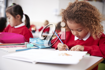 Mixed race schoolgirl wearing school uniform sitting at a desk in an infant school classroom drawing, close up