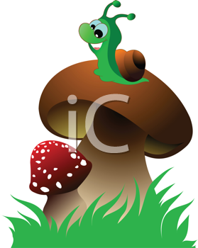 Funny green snail and two mushrooms on green grass. Vector illustration