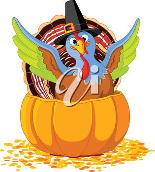 Illustration of cute Pilgrim turkey into pumpkin
