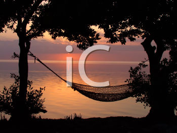 Royalty Free Photo of a Hammock on the Beach at Sunset in the Florida Keys