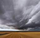 Royalty Free Photo of Thunderclouds in a Field in Montana