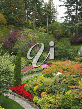 Royalty Free Photo of Flowers in the Butcharts Garden in Canada