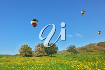 Three bright balloons with a passenger basket fly by over spring blossoming fields
