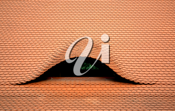 Green eye in the roof