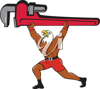 Illustration of a american bald eagle plumber lifting giant monkey adjustable wrench over head looking up to the side set  on isolated white background done in cartoon style.