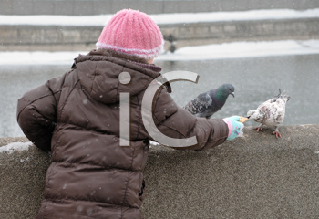 Royalty Free Photo of a Child Feeding Pigeons