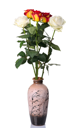 Red and white roses in vase, isolated