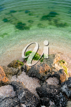 Seascape. Tropical beach from above. Green ocean shallow  water
