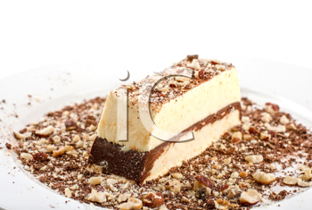 Royalty Free Photo of a Slice of Chocolate Cake With Nuts