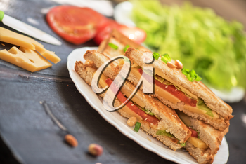 Cheese sandwich with tomato and green lettuce