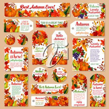 Autumn leaf tag and fall harvest greeting card set. Orange maple foliage, autumn harvest pumpkin and corn vegetable, apple fruit, forest mushroom, acorn and cranberry for fall season holiday design