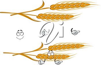 Cartoon ears of ripe yellow wheat character with pensive smiling face, for agriculture, harvest or bakery themes