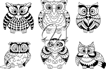 Cartoon colorless old wise great horned owls birds with curly plumage. Decorative birds for children book, Halloween design or mascot usage