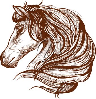 Graceful horse engraving sketch icon with profile of purebred stallion head with flowing mane. Use as equestrian sport symbol or horse club mascot design