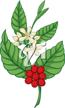 Royalty Free Clipart Image of a Plant