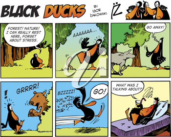 Royalty Free Clipart Image of a Black Ducks Comic Strip in the Forest