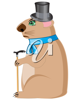 Cartoon of the woodchuck in hat and scarf on white background