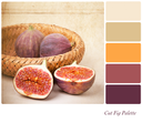 A basket of cut and whole figs, vintage style, in a colour palette with complimentary colour swatches