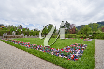 Lawn with flowers of daisies and tulips in a European park in the city of Baden Baden