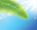Royalty Free Clipart Image of a Palm Tree Leaf