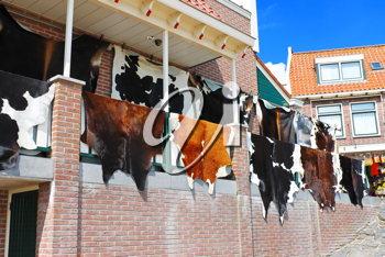 Tanned hides on the balcony of the leather shop in Volendam. Netherlands