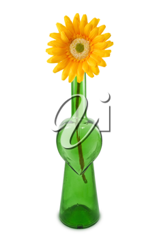Royalty Free Photo of a Flower in a Bottle