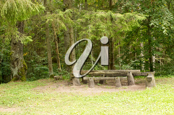 Picnic place in the green forest  at summer day