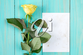 Yellow rose and blank card on blue wooden background