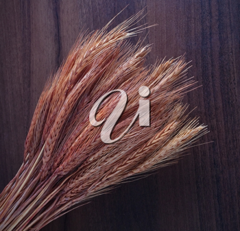 Wheat ears on the wooden background