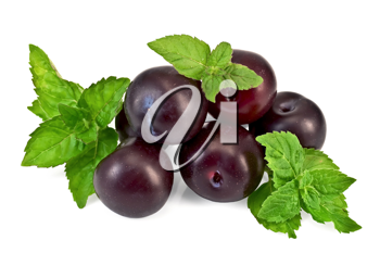 A few plums with sprigs of green mint isolated on white background