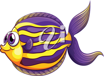 Illustration of a colorful round fish on a white background