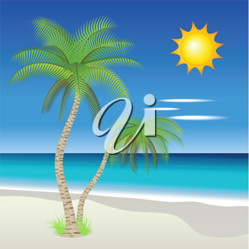 Royalty Free Clipart Image of Palm Trees on a Beach