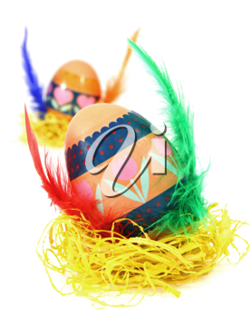 Easter egg race. Wings made of color feathers. Isolated on white.