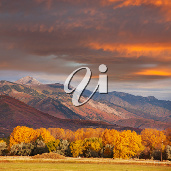 Royalty Free Photo of a Mountain and Forest in Autumn