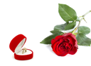 Royalty Free Photo of a Red Rose Beside a Ring