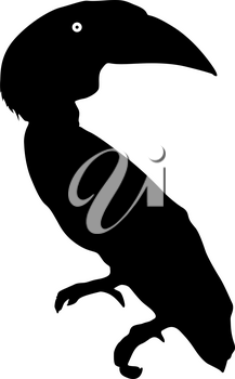 Silhouette of the bird toucan on a white background.
