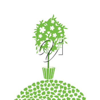 The tree costs in a pot on a hillock. A vector illustration
