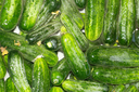 cucumbers in the water as a background