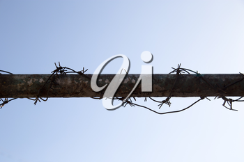 barbed wire on tube