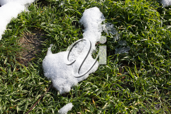 snow on the green grass