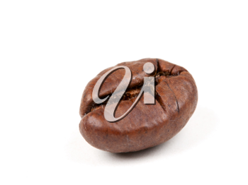 Royalty Free Photo of a Coffee Bean