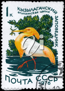 USSR - CIRCA 1976: A Stamp printed in USSR shows image of a Squacco Heron with the inscription Kyzylagach Conservation from the series Waterfowl, circa 1976