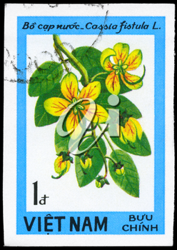 VIETNAM - CIRCA 1984: A Stamp printed in VIETNAM shows image of a Cassia fistula, from the series Wildflowers, circa 1984