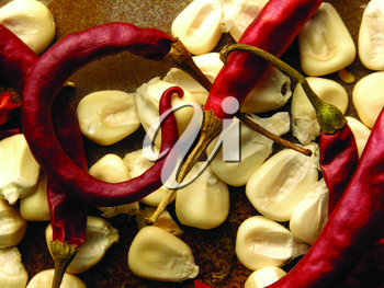 Royalty Free Photo of Hot Peppers and Corn Kernels