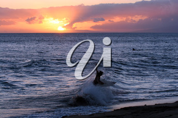 Royalty Free Photo of a Person Surfing at Sunset