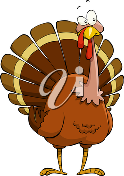 Turkey on a white background, vector illustration